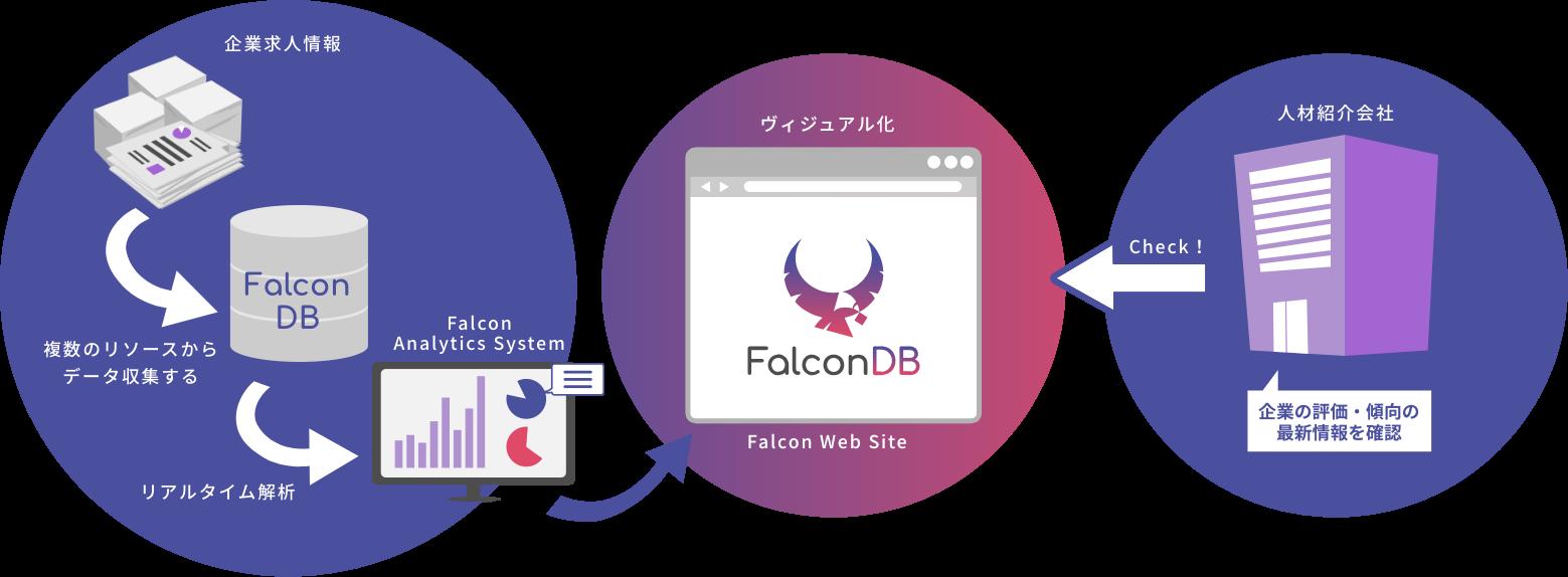 Falconシステム概要図